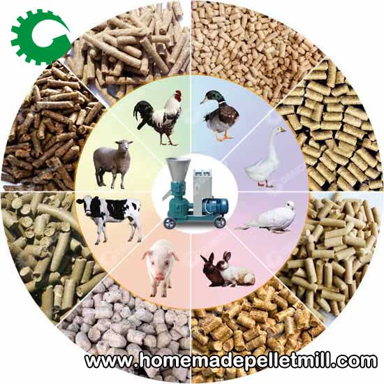 Pellet Making Machine Can Make Nutrient Rich Animal Feed Particles